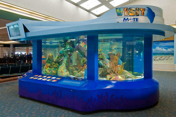 A 6,000 gallon saltwater aquarium is located in the second floor of the terminal building. Image: courtesy of Sarasota Manatee Airport Authority.