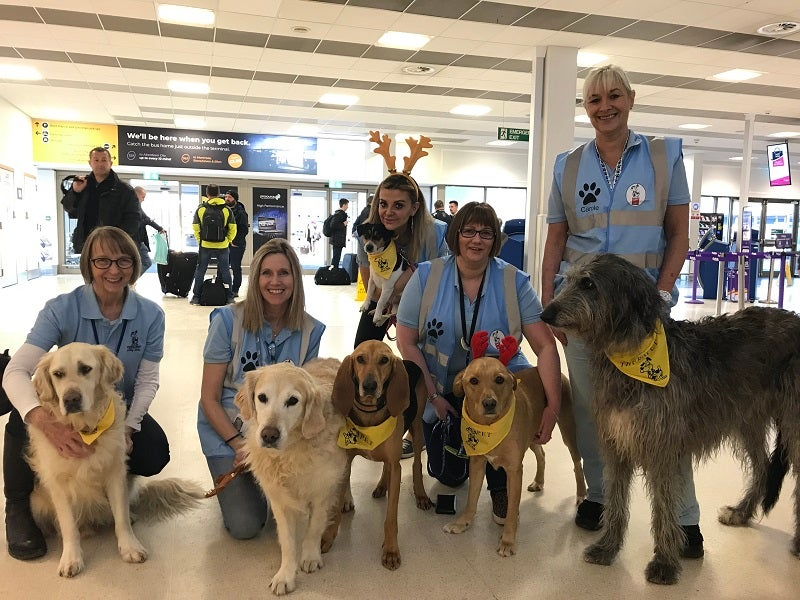 role of dogs at airports